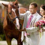 cavallo matrimonio